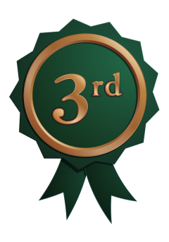 3rd Place Badge