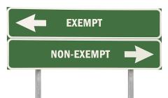 Exempt - Non-Exempt